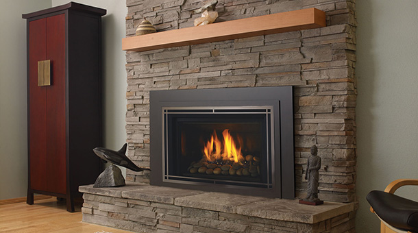 Regency Horizon® HRI6E Large Gas Insert