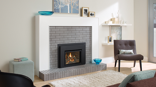 Regency Liberty® L234 Small Gas Insert