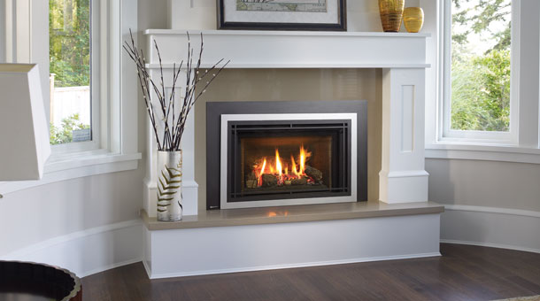 Regency Liberty® LRI4E Medium Gas Insert