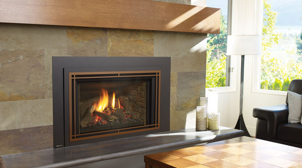 Regency Liberty® LRI6E Large Gas Insert